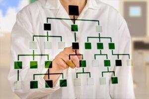 帰化申請サポートの家系図の画像